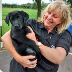 Introducing Mason who will become a Medical Detection Dog.